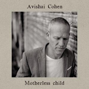 Avishai Cohen 歌手頭像