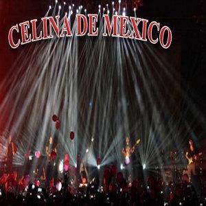 Celina 歌手頭像