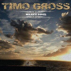 Timo Gross 歌手頭像