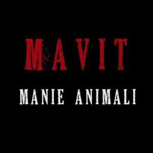 Mavit 歌手頭像