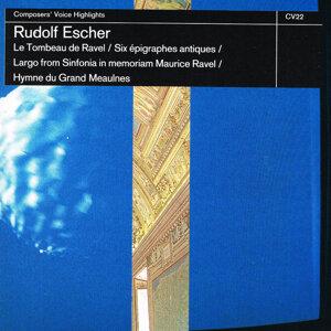 Rotterdam Philharmonic Orchestra / Concertgebouw Orchestra / Ensemble Alma Musica 歌手頭像