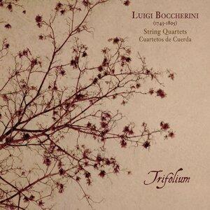 Trifolium 歌手頭像