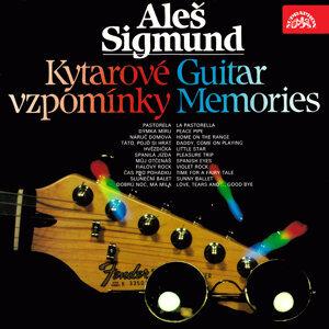 Aleš Sigmund 歌手頭像