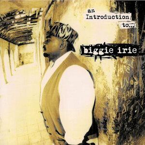 Biggie Irie 歌手頭像