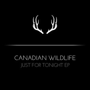 Canadian Wildlife 歌手頭像
