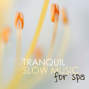 Tranquil Music Sound of Nature 歌手頭像