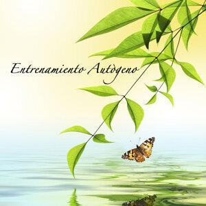 Entrenamiento Autògeno Y Meditación Specialistas