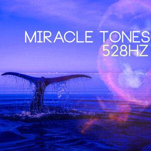 Solfeggio Frequencies 528Hz 歌手頭像