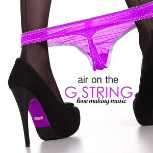 Air on the G String 歌手頭像