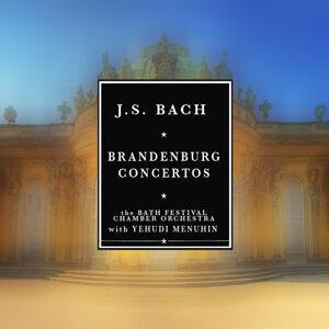 Yehudi Menuhin and Bath Festival Chamber Orchestra 歌手頭像