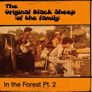 Original Black Sheep Of The Family 歌手頭像