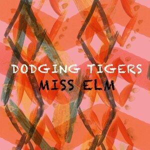 Miss Elm