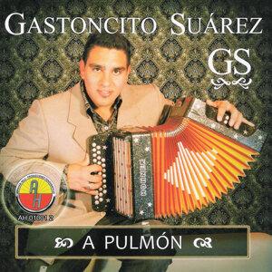 Gastoncito Suarez 歌手頭像
