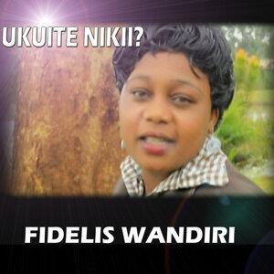 Fidelis Wandiri 歌手頭像