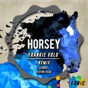 Frankie Volo 歌手頭像
