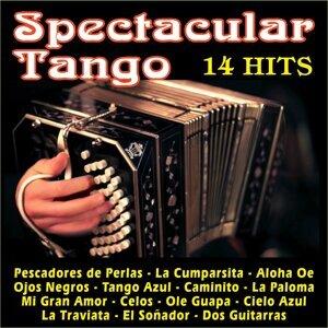 "Orquesta De Baile ""Luis Manzel"" 歌手頭像"
