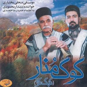 Didar Mahmoudi 歌手頭像