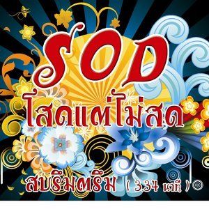 S.O.D. Sod Tae Mai Sot アーティスト写真