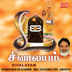 Veeramani Daasan|T. M. S. Selva Kumar 歌手頭像