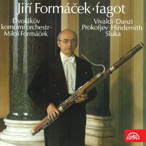 Jiří Formáček 歌手頭像