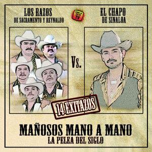 Los Razos y El Chapo De Sinaloa 歌手頭像