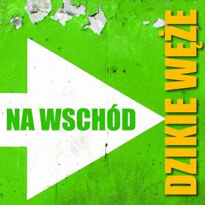 Dzikie Weze 歌手頭像
