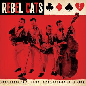 Rebel Cats 歌手頭像