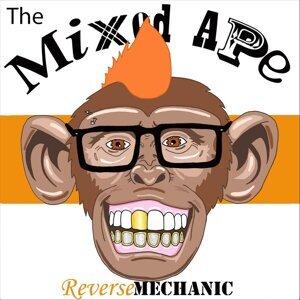 Reverse Mechanic 歌手頭像