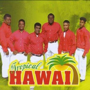 Tropical Hawai 歌手頭像