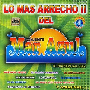 Conjunto Mar Azul 歌手頭像