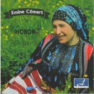 Emine Cömert 歌手頭像