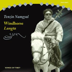 Tenzin Namgyal 歌手頭像