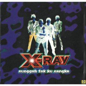 X-RAY 歌手頭像