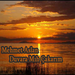 Mehmet Aslan 歌手頭像