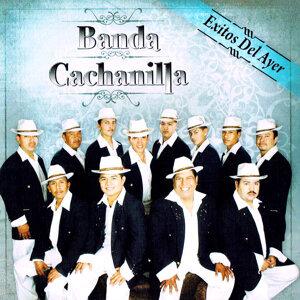 Banda Cachanilla 歌手頭像