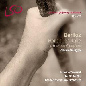 London Symphony Orchestra & Valery Gergiev 歌手頭像