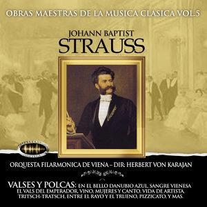 Orquesta de Viena Johann Strauss 歌手頭像