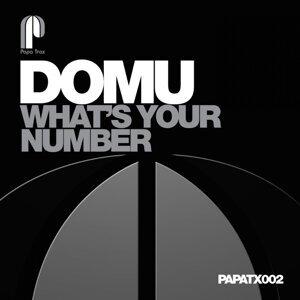 Domus 歌手頭像