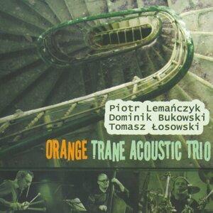 Orange Trane Acoustic Trio 歌手頭像