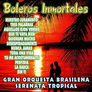 Gran Orquesta Brasileña Serenata Tropical 歌手頭像