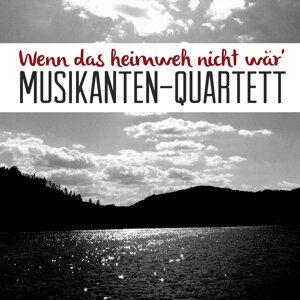 Musikanten-Quartett 歌手頭像