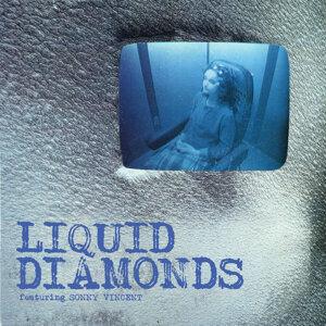 Liquid Diamonds 歌手頭像