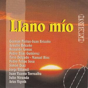 Conjunto Llano Grande 歌手頭像