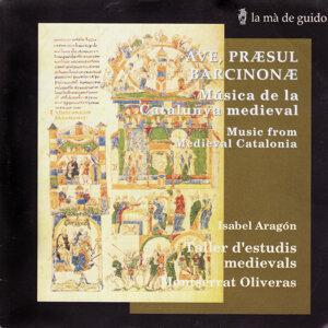 Taller d'estudis medievals 歌手頭像