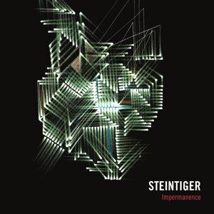 Steintiger 歌手頭像
