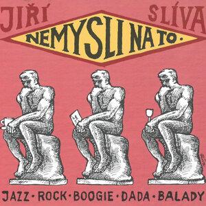 Jiří Slíva 歌手頭像