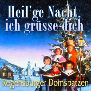 Regensburger Domspatzen; Roland B¸chner 歌手頭像