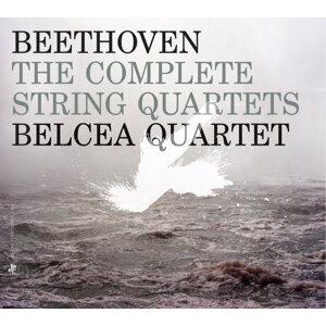 Belcea Quartet (貝爾琪亞弦樂四重奏) 歌手頭像