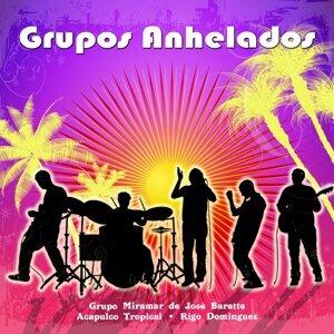 Grupo Miramar De Jose Bartte | Acapulco Tropical | Rigo Dominguez y su Grupo Audaz 歌手頭像