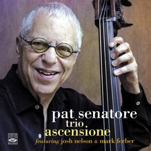 Pat Senatore 歌手頭像